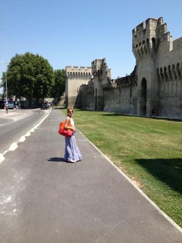 Spre Castelul Papilor, în Avignon