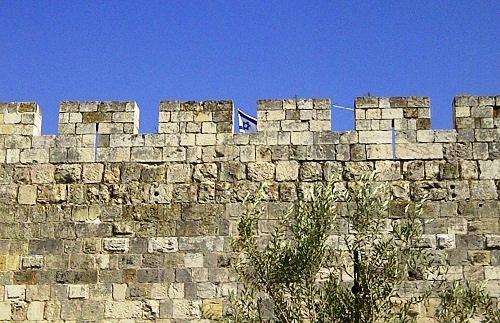54 Nici un zid, nici un jihad si nici un razboi nu va cobori acest steag detali