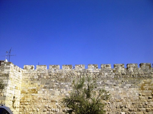 54 Nici un zid, nici un jihad si nici un razboi nu va cobori acest steag